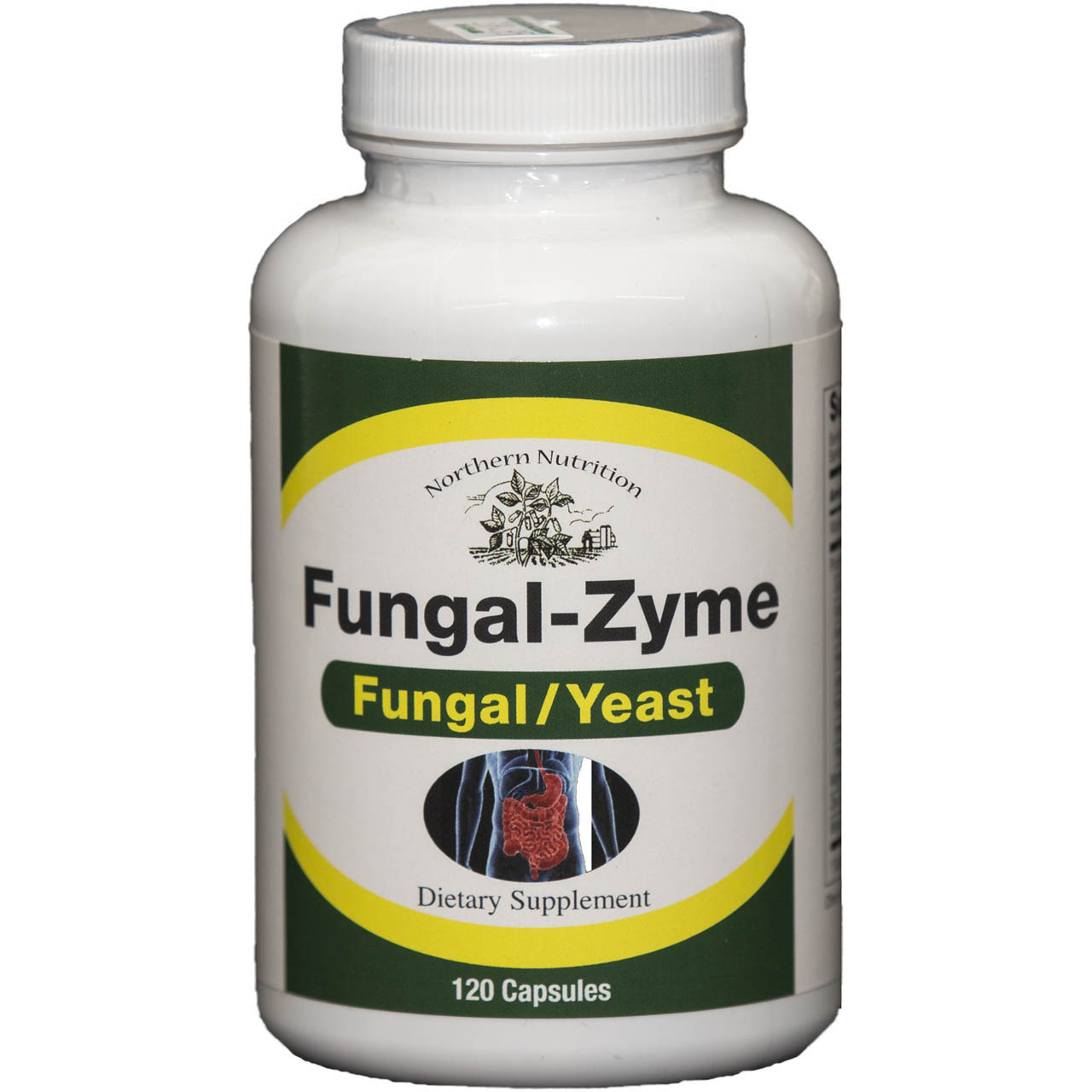 Fungal-Zyme